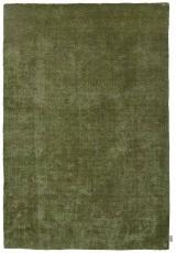 POWDER SOLID OLIVE
